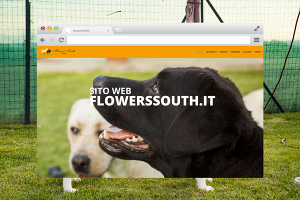 Flower south